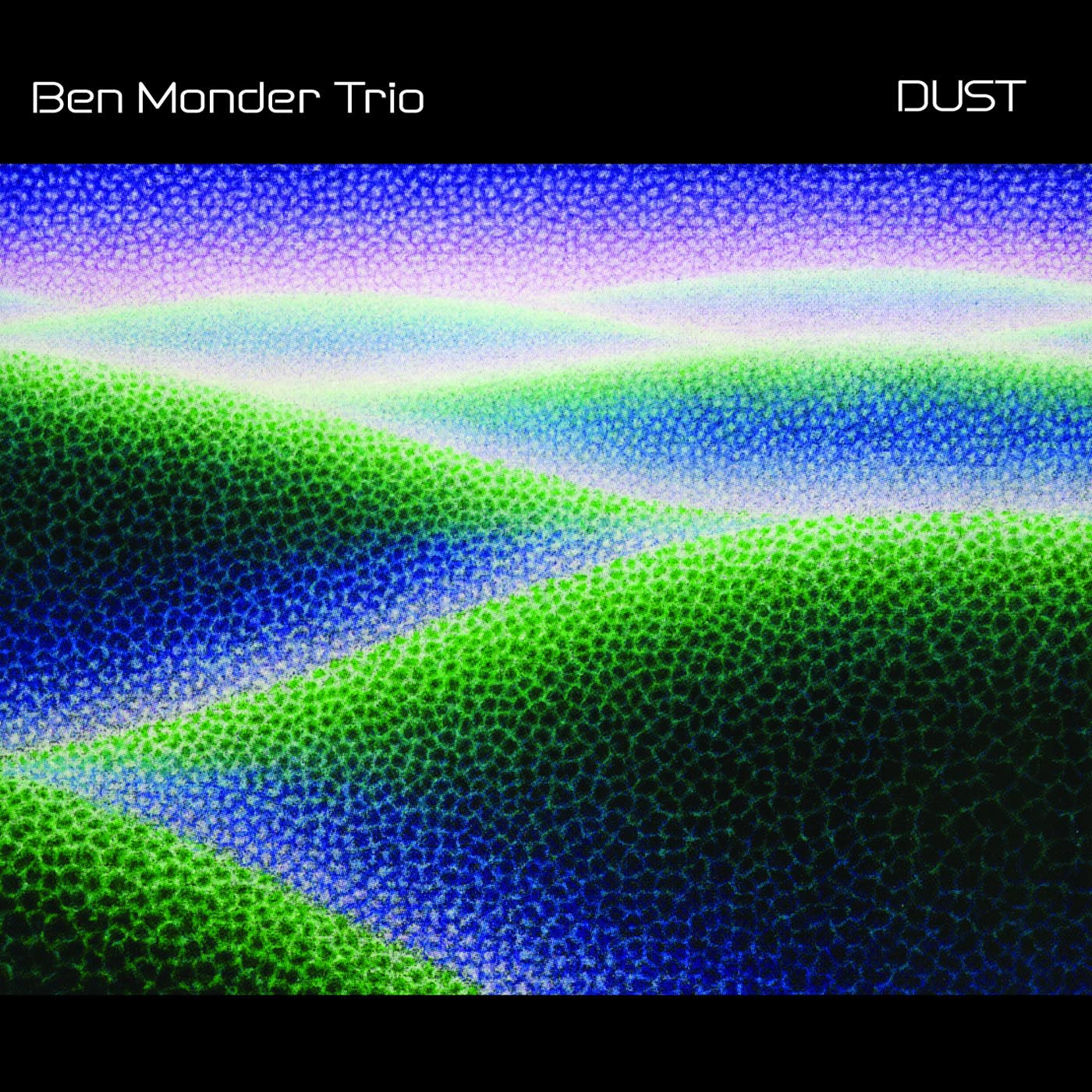 Dust by Ben Monder cover