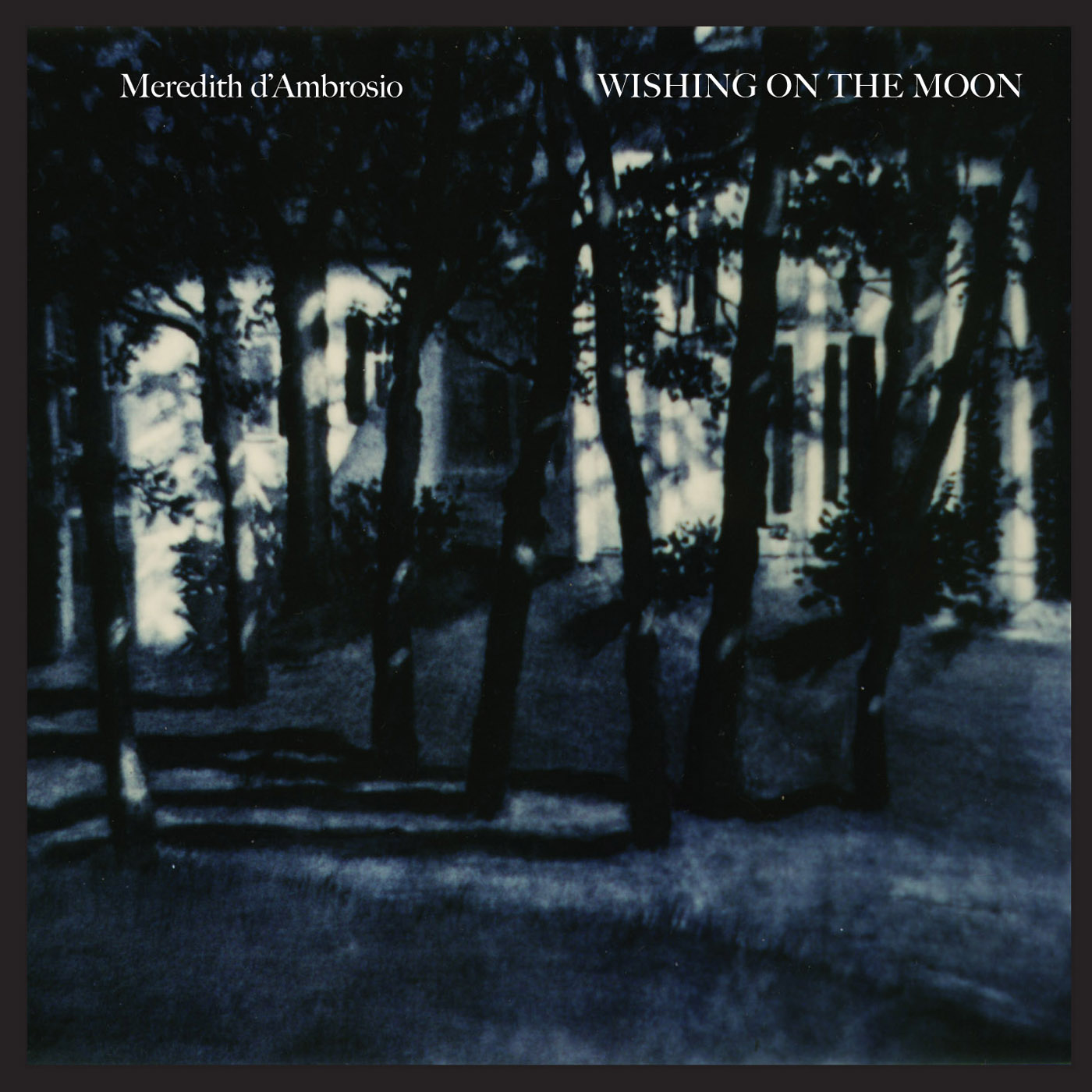 Wishing On The Moon by Meredith D'Ambrosio cover