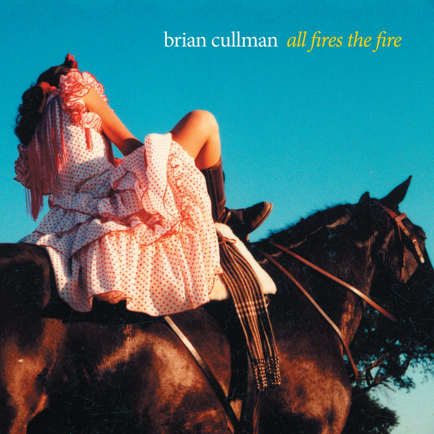 All Fires The Fire by Brian Cullman cover