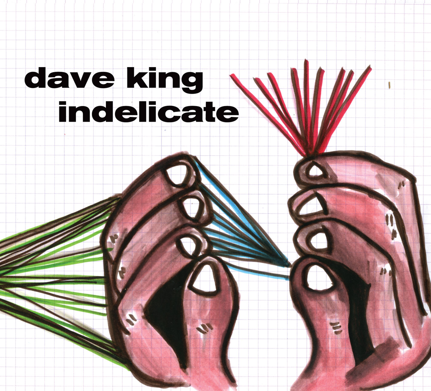 Indelicate by Dave King cover
