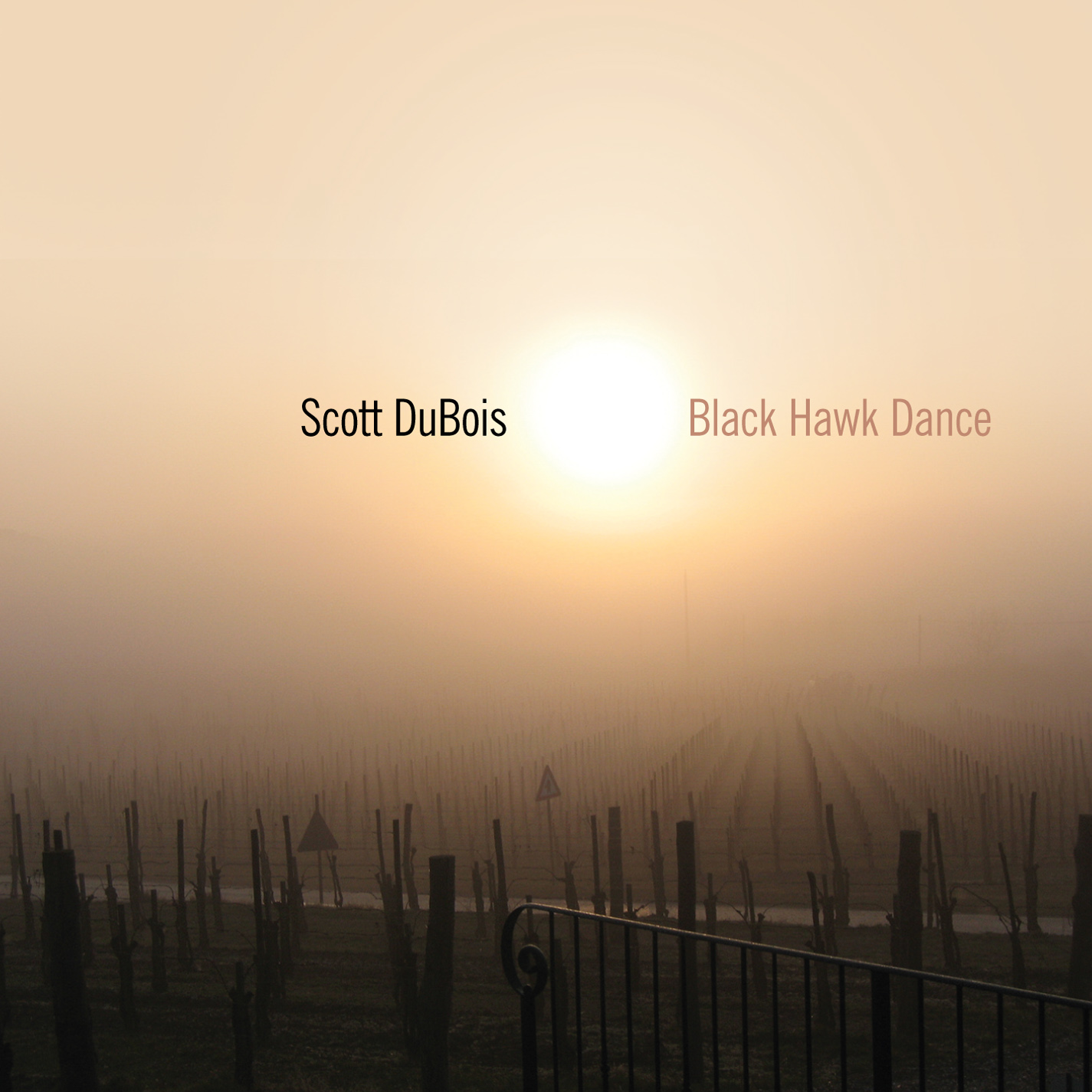 Black Hawk Dance by Scott DuBois cover