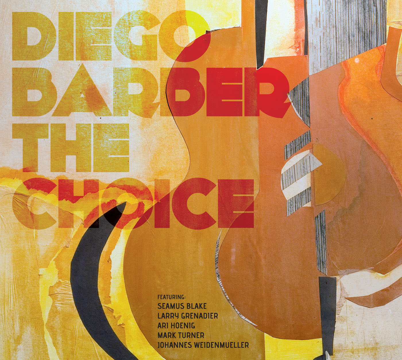 The Choice by Diego Barber cover
