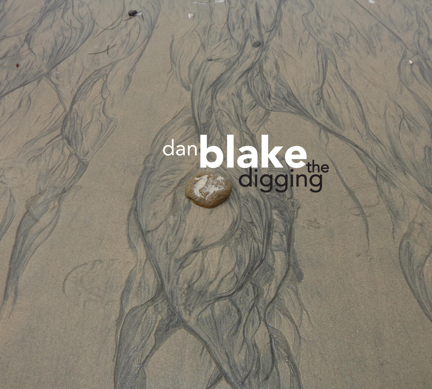 The Digging  by Dan  Blake cover