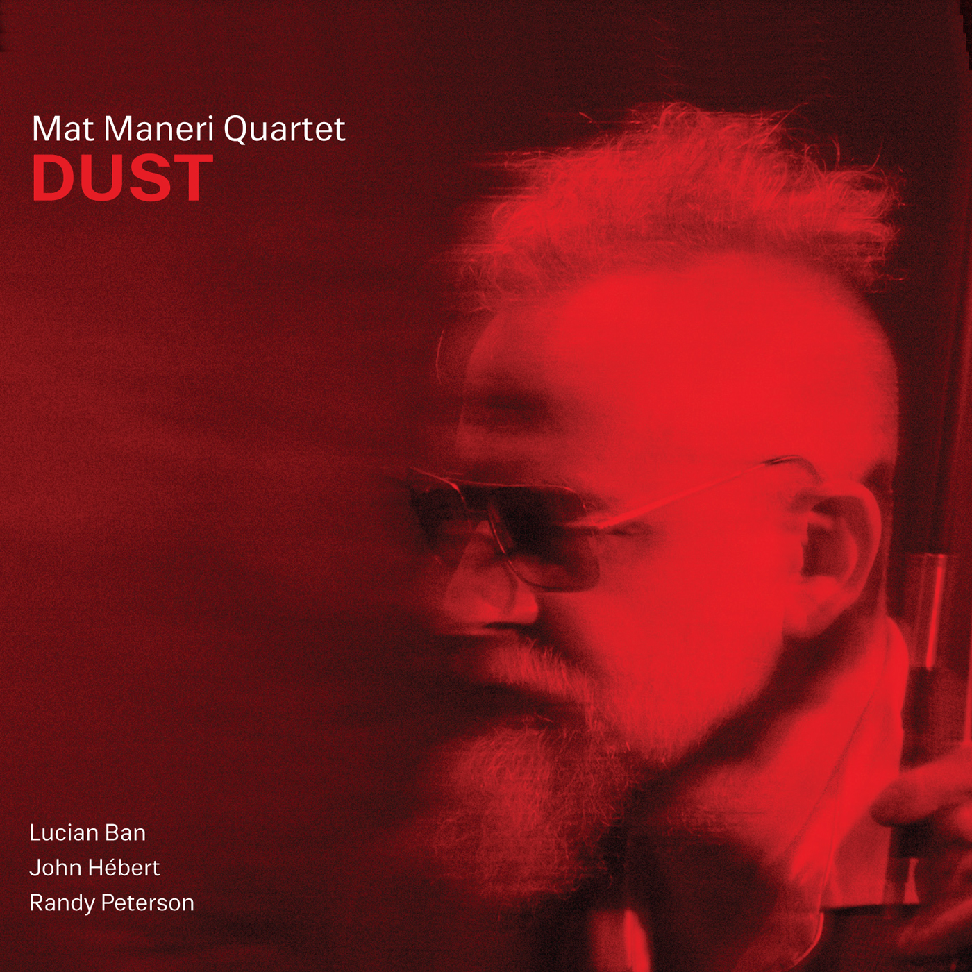 Dust  by Mat  Maneri cover