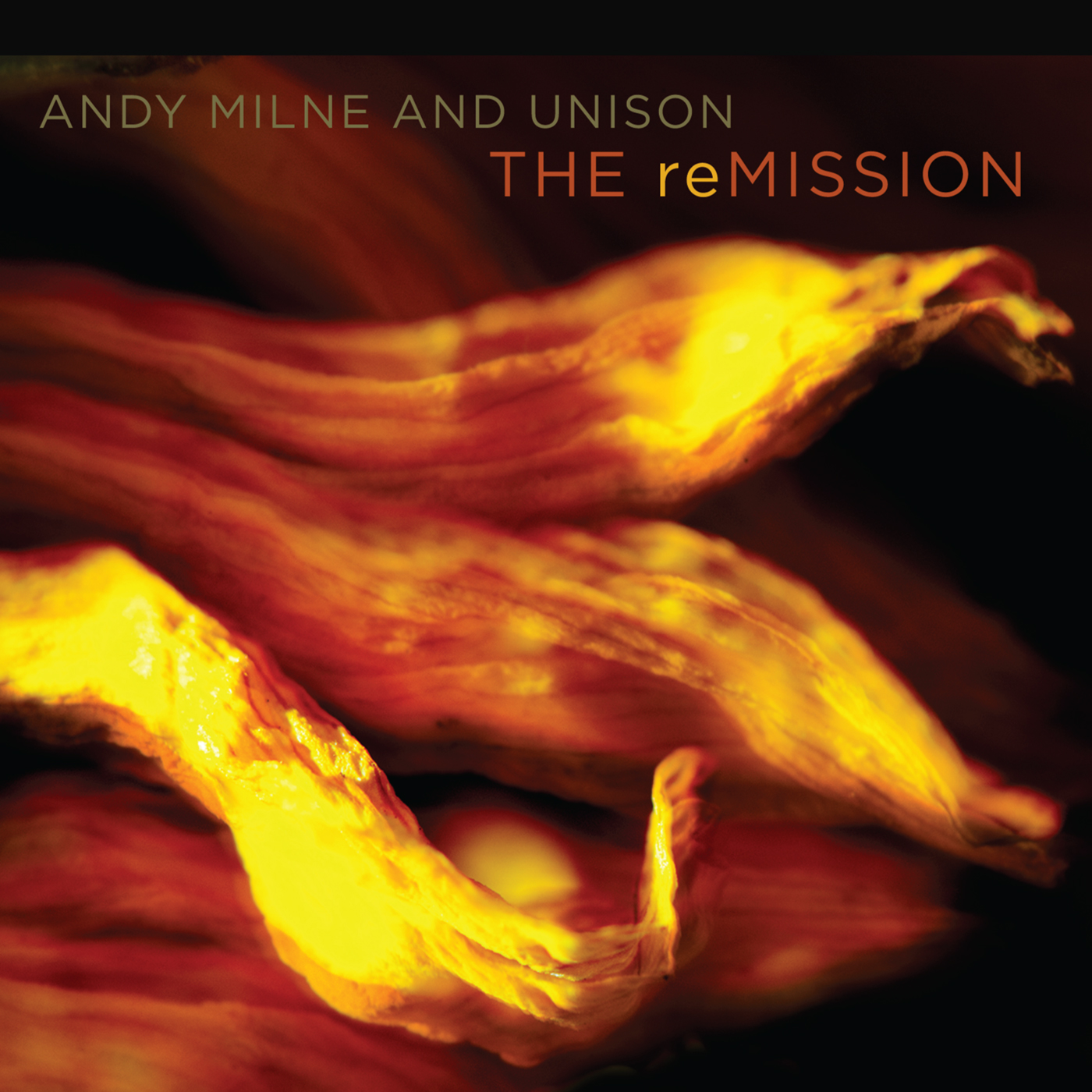 The Remission  by Andy  Milne cover