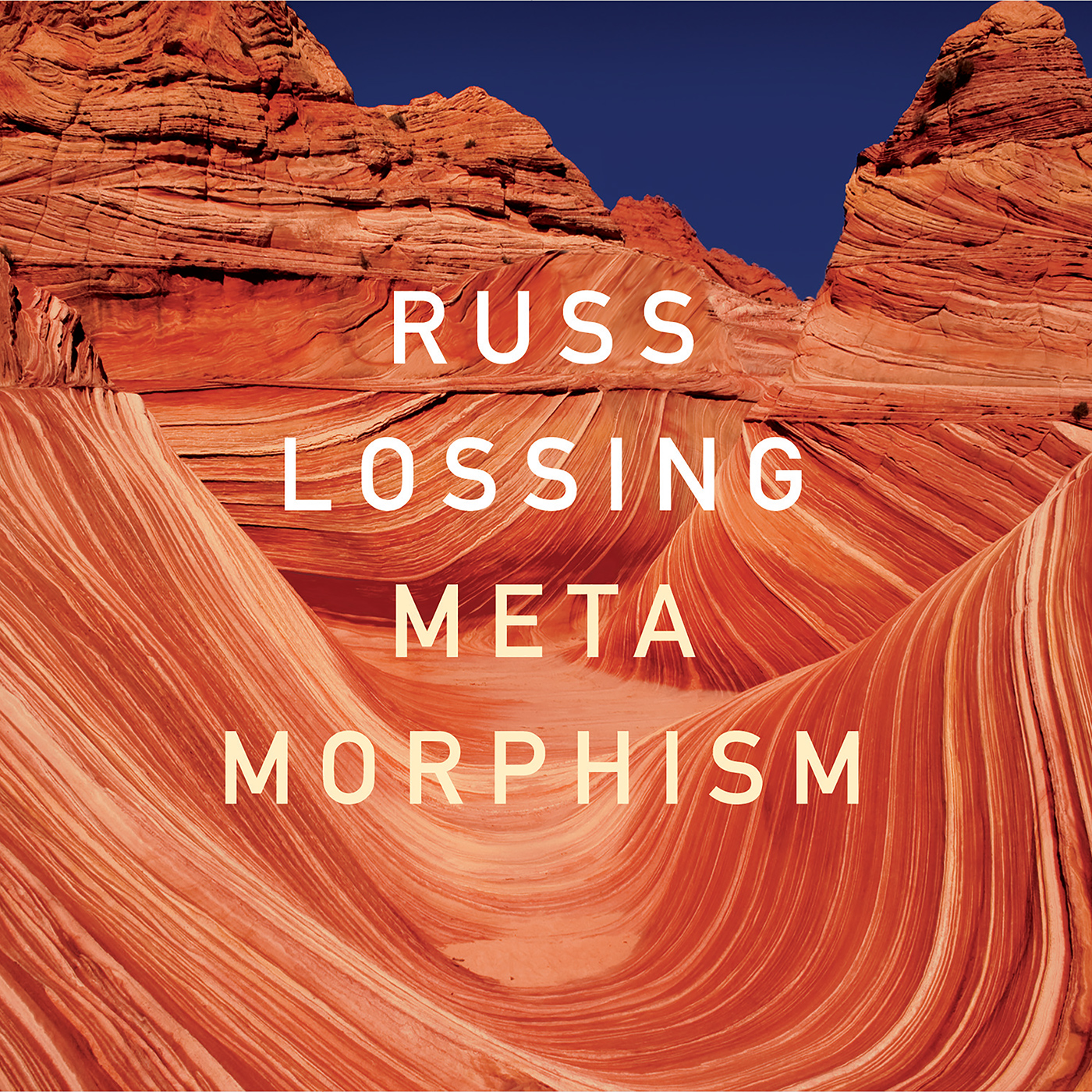 Metamorphism  by Russ  Lossing cover