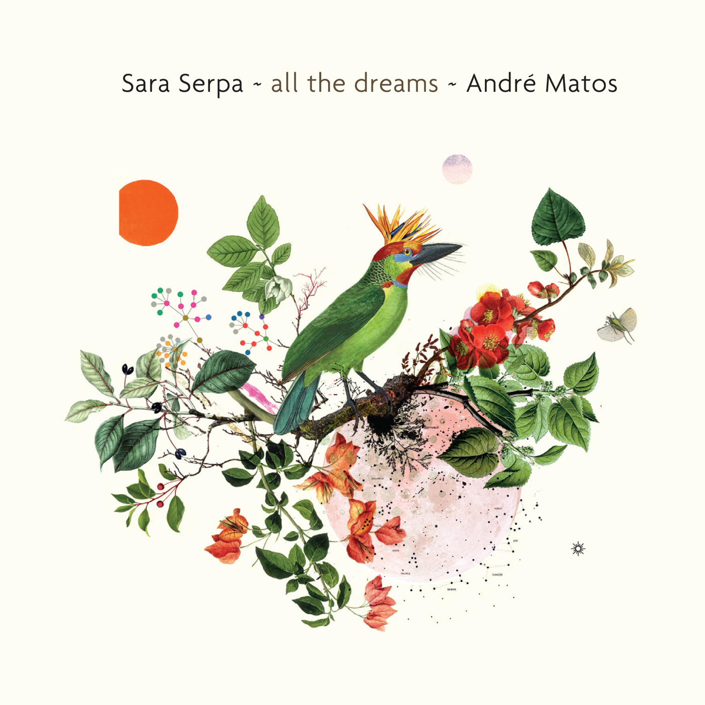 All the Dreams  by Sara  Serpa cover
