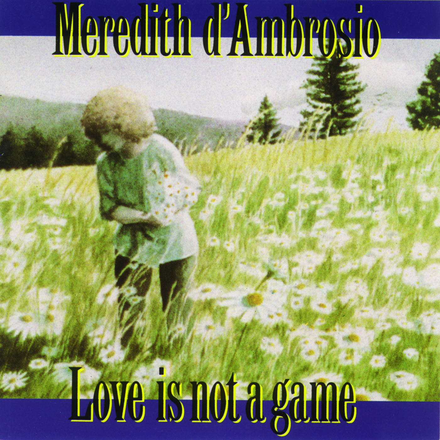 Love Is Not A Game by Meredith d\'Ambrosio cover