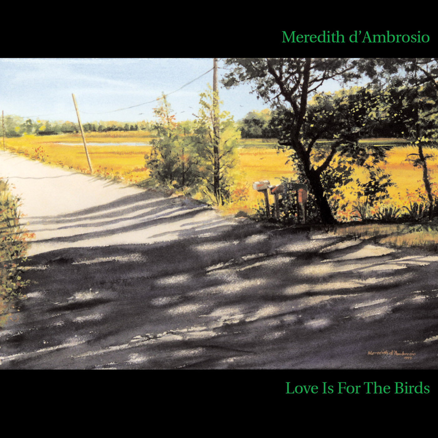 Love Is For The Birds by Meredith d\'Ambrosio cover
