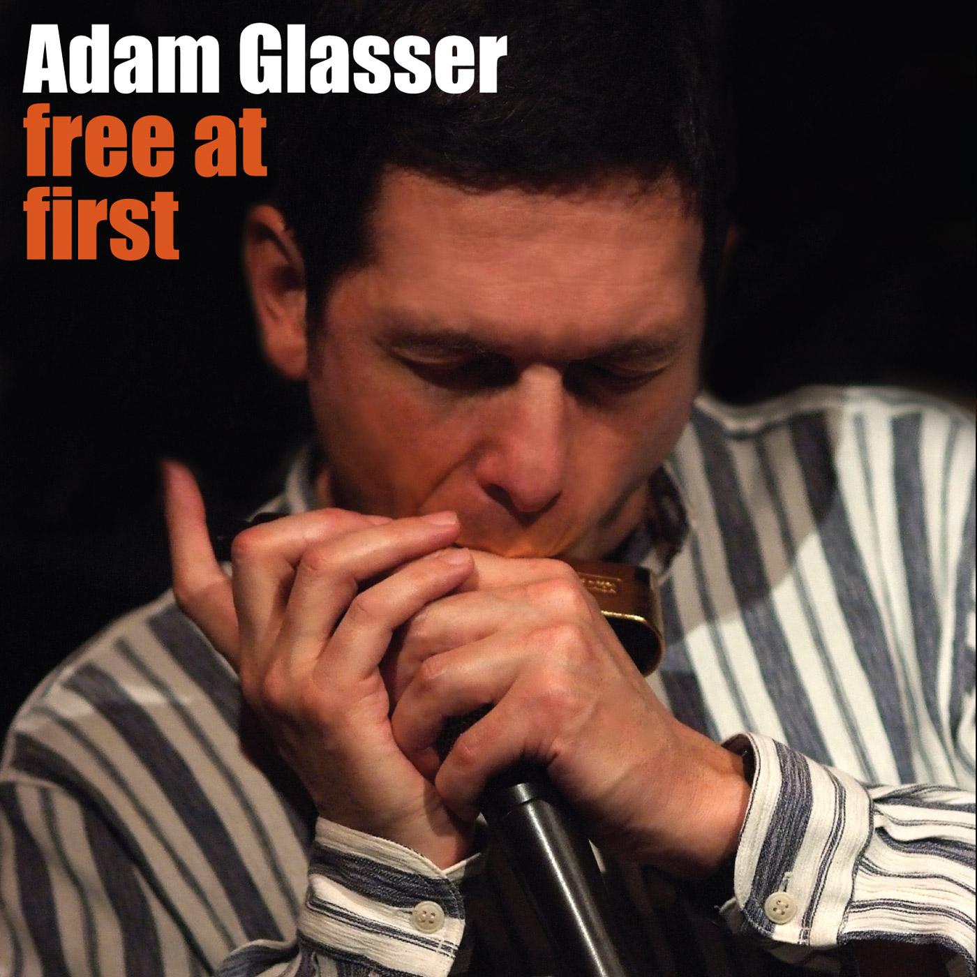 Free At First by Adam Glasser cover
