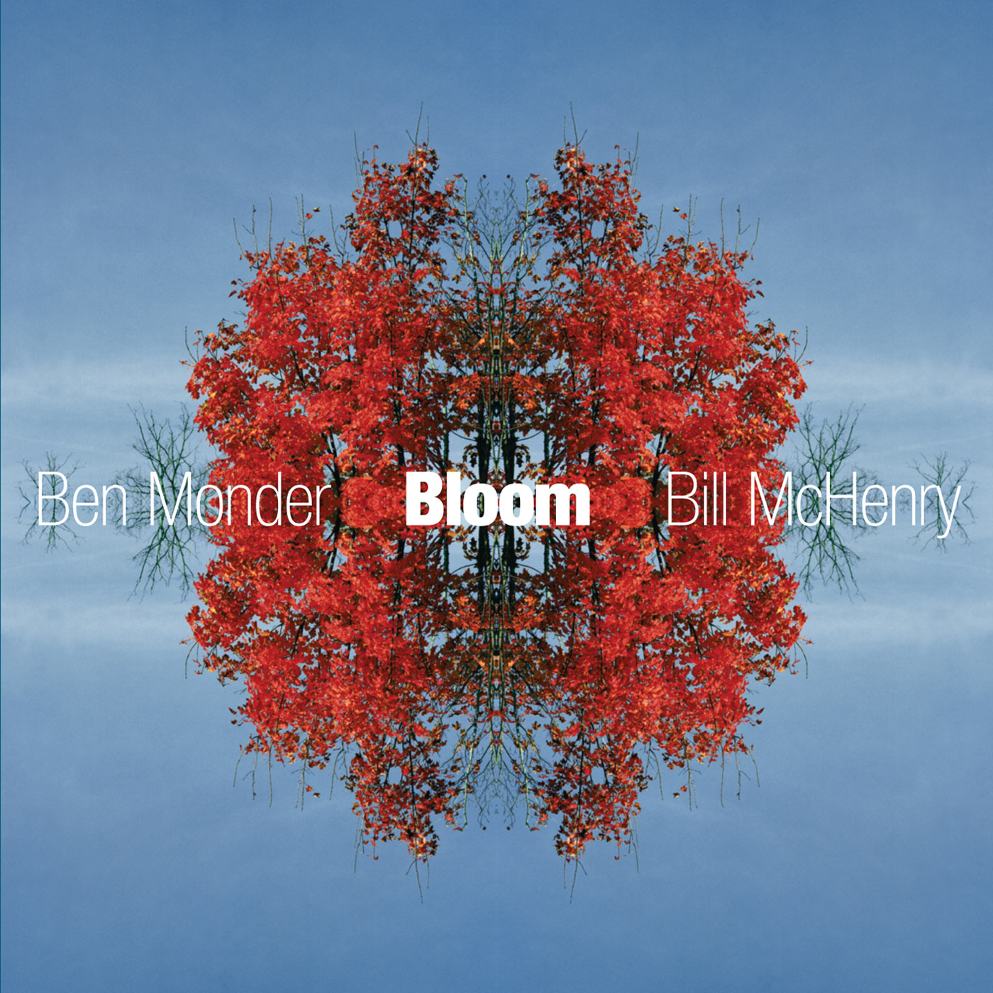 Bloom by Ben Monder cover