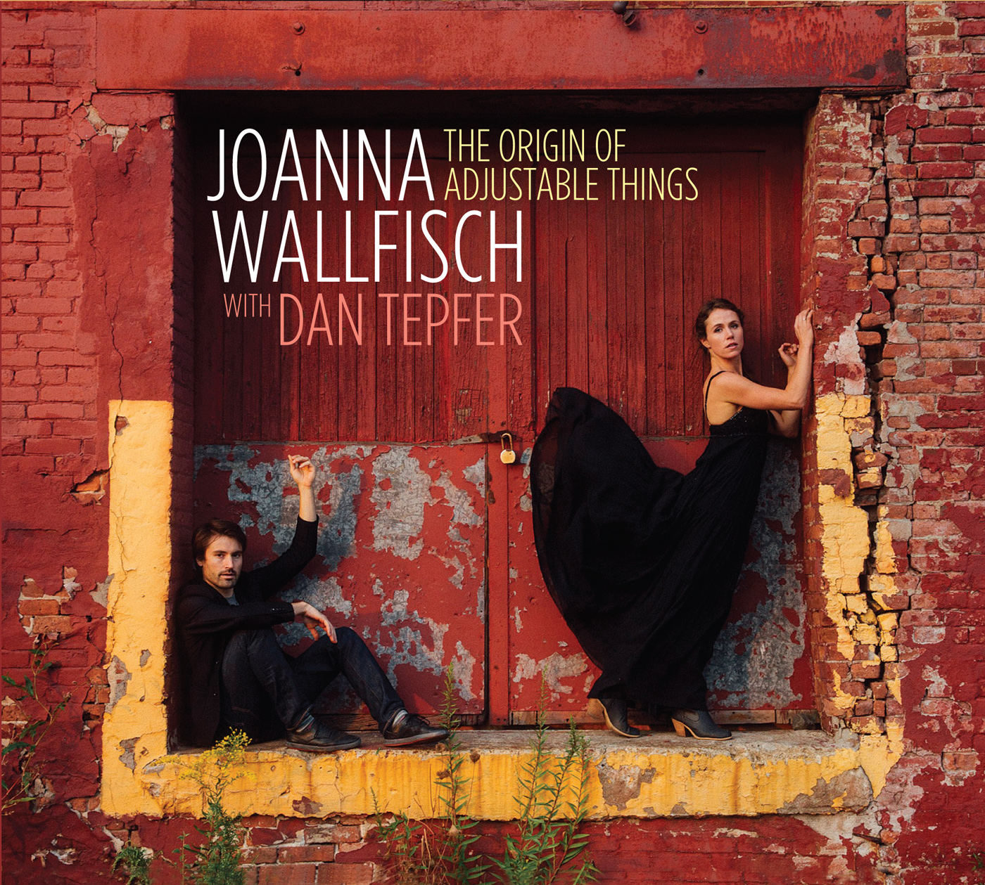 The Origin of Adjustable Things  by Joanna  Wallfish cover