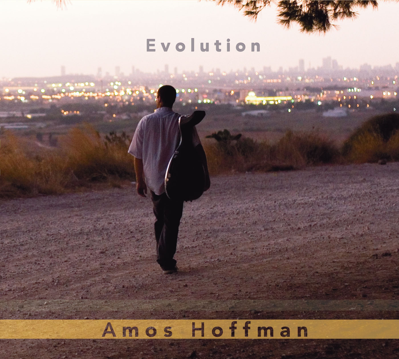 Evolution by  amos Hoffman cover