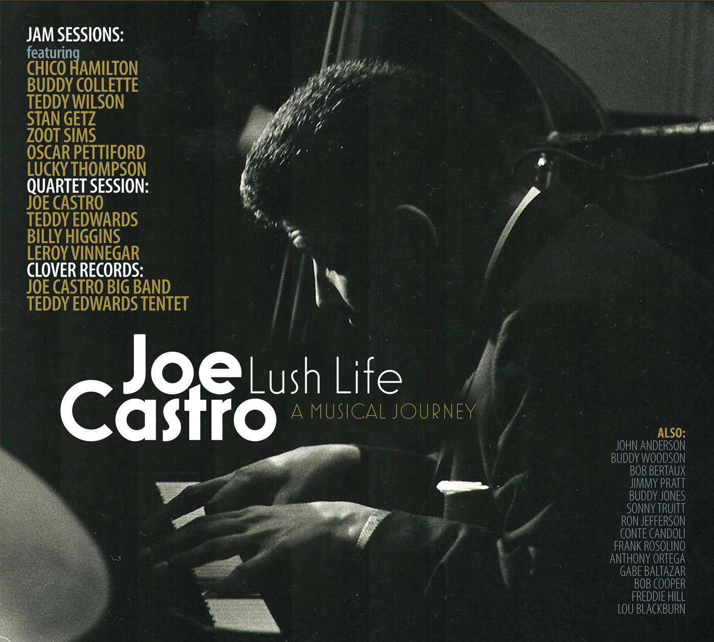 Lush Life - A Musical Journey  by Joe  Castro cover