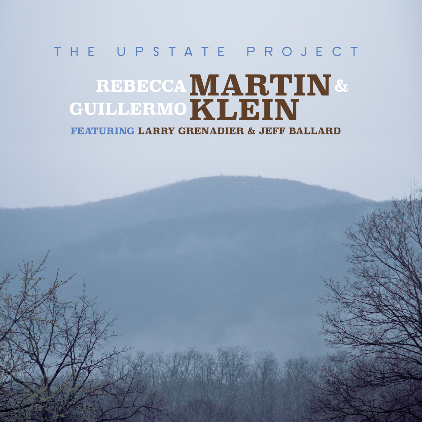 Upstate  by Rebecca  Martin cover