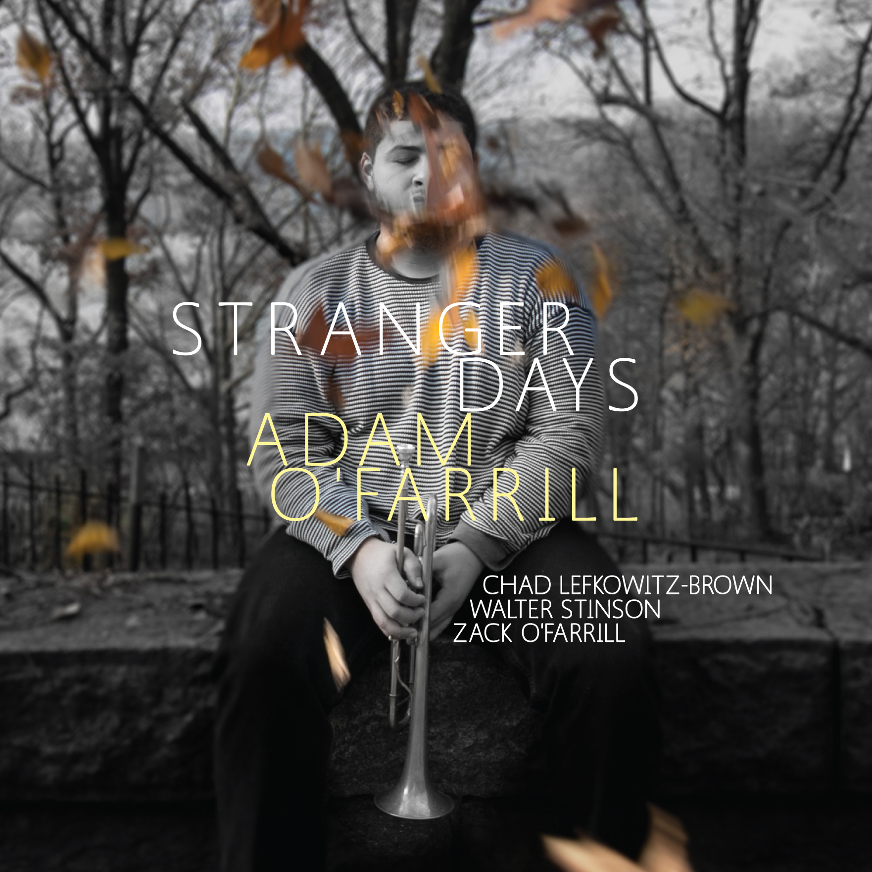 Stranger Days  by Adam  O-Farrill cover