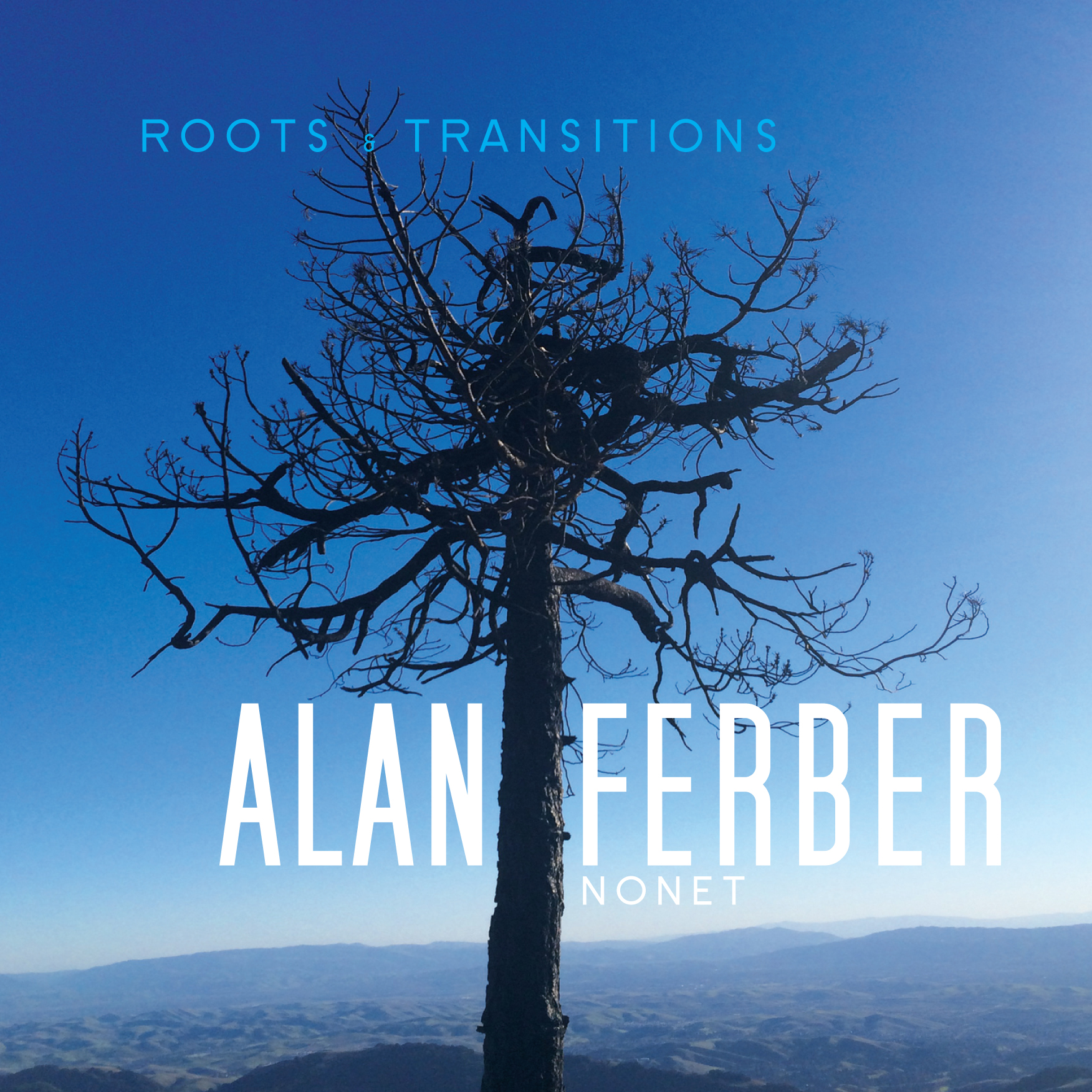 Roots & Transitions  by Alan  Ferber cover