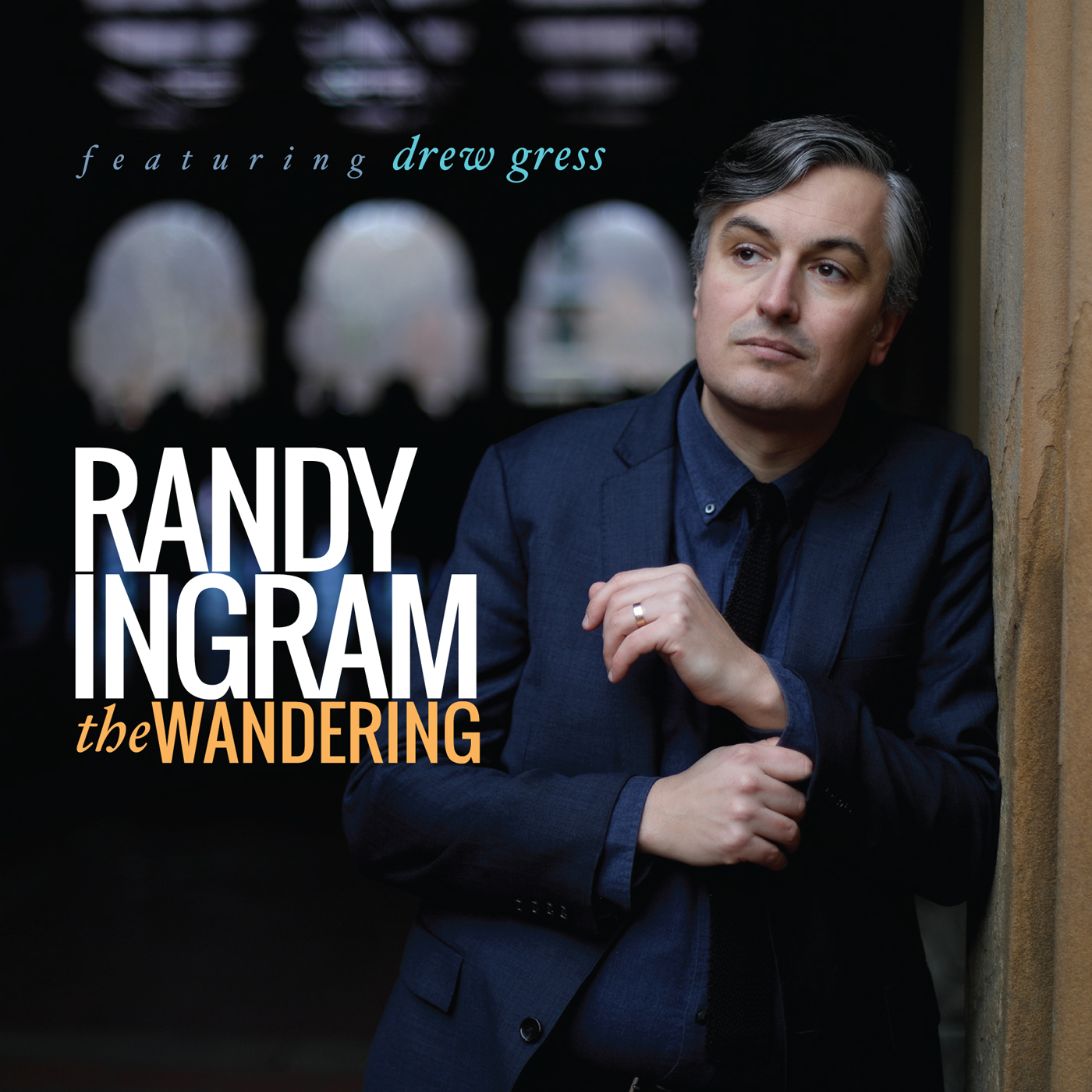 The Wandering  by Randy  Ingram cover