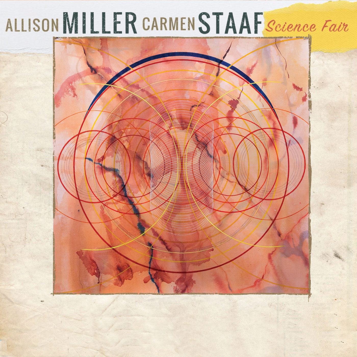 Science Fair  by Allison  Miller cover